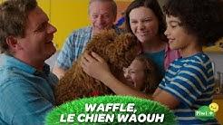 WAFFLE, le chien waouh - Episode intégral 'Opération petit chat' - Ta série sur Piwi+ et myCANAL