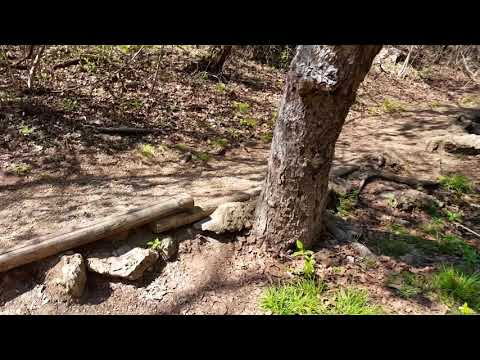 Mother Neff State Park Wash Pond