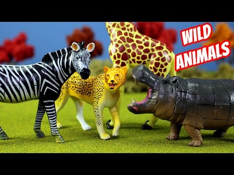 Thumbnail: Toy Wild Animals 3D Puzzles Collection Zebra Hippo Giraffe Cheetah │ Zoo Animals Fun Facts For Kids