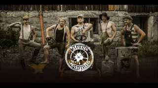 "Steve'n'Seagulls  - ""Thunderstruck""  -  ( Studio Version)"