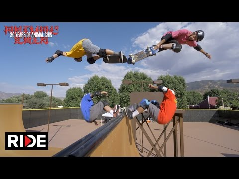Animal Chin 30 Years  Tony Hawk, Steve Caballero, Mike McGill & Lance Mountain 2/4