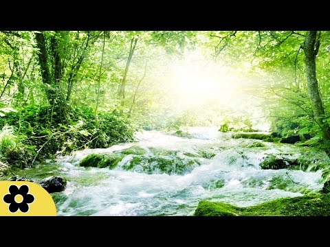 Healing Meditation Music, Relaxing Music, Calming Music, Stress Relief Music, Peaceful Music, ✿2714C