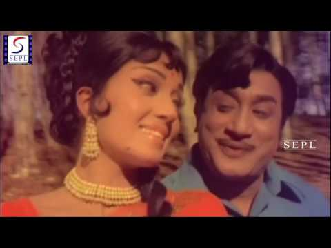 Yamuna Nathi From Movie Gouravam