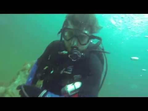 Spearfishing offshore Savannah Ga. 5-27-2016
