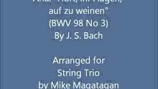 """Aria: """"Hört, ihr Augen, auf zu weinen"""" (BWV 98 No 3) for String Trio"""