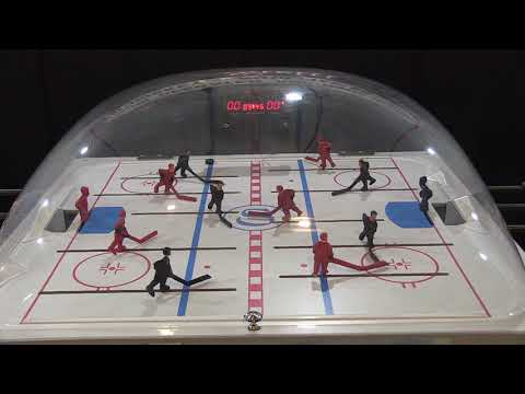 Shelti Dome Hockey