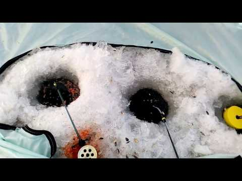 зимняя рыбалка на карася - 2016-11-21 18:42:14