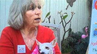 California Pet Lovers License Plate Program Needs Your Help