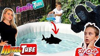 FamilyTube #04 El Jacuzzi  del Tiburon