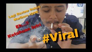 Review Rokok Marlboro IQOS asal Jepang, Cara berhenti merokok dengan Rokok IQOS
