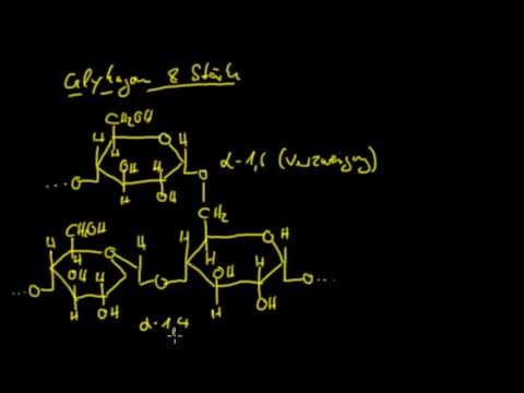 Organische Chemie - 12: Kohlenhydrate 4 - Polysaccharide