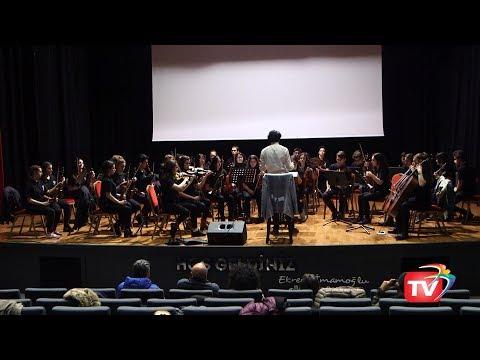 Beylikdüzü Gençlik Senfoni Orkestrası