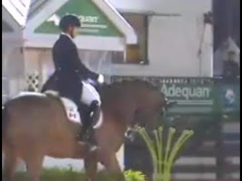Dressage Disaster Highlights: Jill Irving and Arthur Grand Prix Freestyle