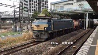 新川崎駅をお昼頃、通過する貨物列車 !在来線達!   貨物線 新鶴見機関区  EF64 EF65  EF66  EH500 牽引