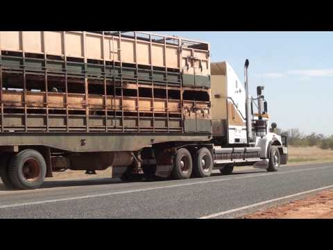 Road trains, Central Australia