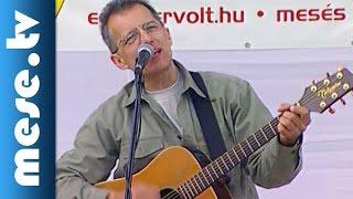 Huzella Péter: Virág voltam (gyerekdal, koncert részlet) | MESE TV