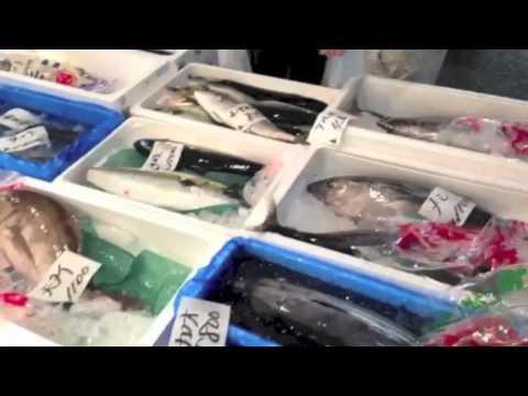 Tsukiji Fish Market With Sushi Chef Yasuda & ChubbyChineseGirl