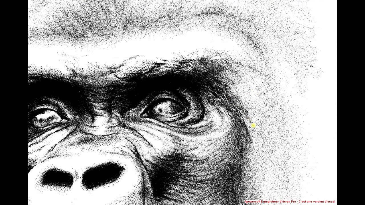 Sauvons nos cousins les grands singes premier dessin - Dessin de singes ...