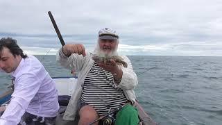 Морская рыбалка на фелюге. Одесса 1 июля 2018 г.