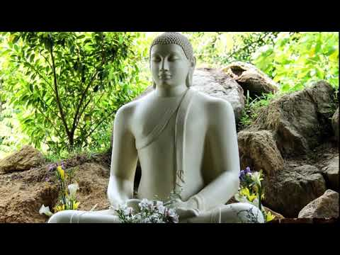 Mindfulness meditation class 2, Breathing 1