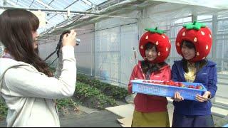 3月28日(土)、29日(日)に「パシフィコ横浜」で行われる「遊ぶ。暮らす。...