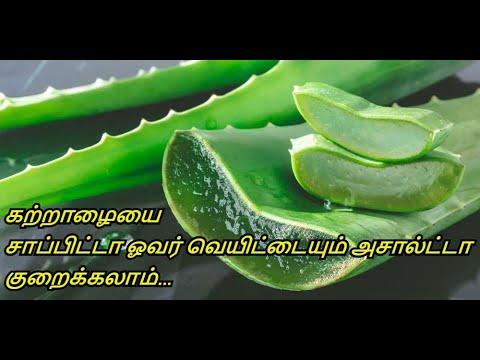 Benefits of Aloe Vera   Hair, Skin & Weight-Loss   katrazhai Payangal   Healthy Life - Tamil.
