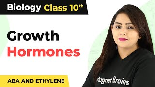 Growth Hormones (ABA and Ethylene)  | Control and Coordination | Class 10 Biology