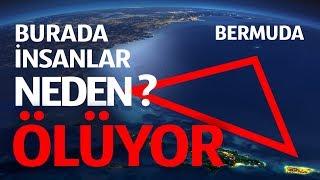 Bermuda Şeytan Üçgeni'nin Dibinde Neler Yaşar
