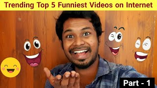 Top 5 Funniest Video on Internet || from my favorite collections