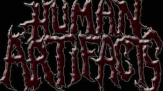 Brutal Death Metal And Goregrind Compilation Part 15