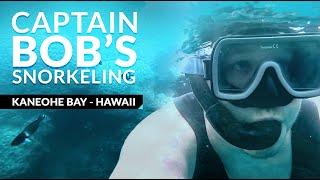 Snorkeling Reefs in Hawaii - Captain Bob's Picnic Sail