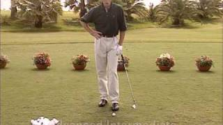 Golf - Perfección por la Práctica. David leadbetter 3 de 7 spanish