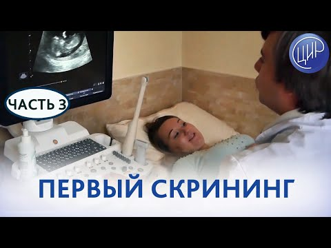 Первый скрининг при беременности. Как проходит первый скрининг (скрининг первого триместра) в ЦИР.