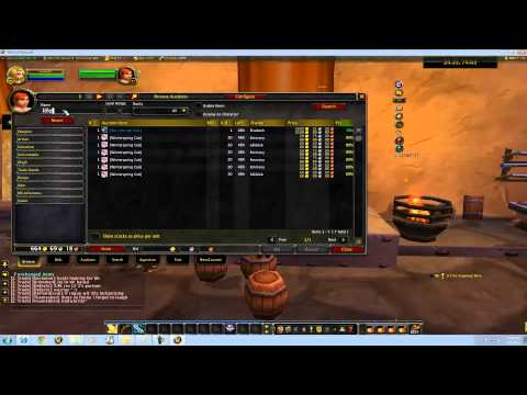 Addons Auctioneer.mp4