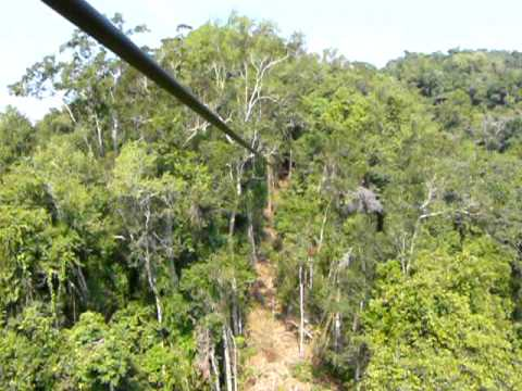 Gibbon Experience - Northern Laos