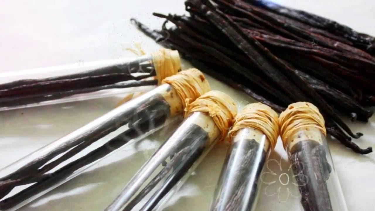 Ваниль польза и вред | ваниль пряность, натуральная ваниль польза