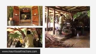 Mauritius Complete Tea Route - Route complète du thé - Ile Maurice