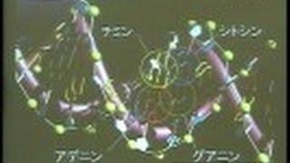 遺伝子・DNA・ゲノムー50年でわかったこと ヒトゲノム解読完了・DNAらせん発見50周年記念講演会