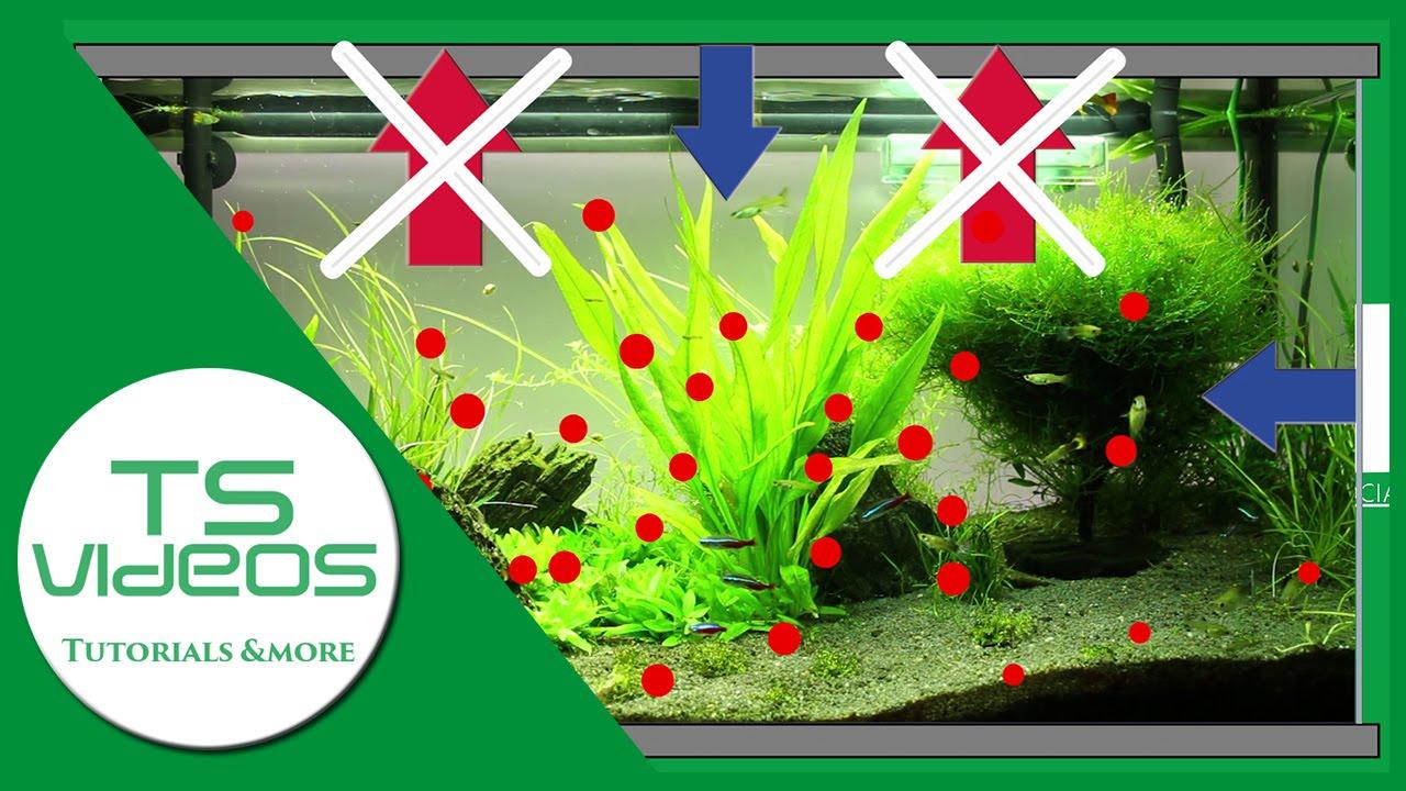 Wasserwechsel im aquarium tsvideos youtube for Aquarium wasserwechsel