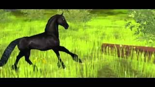 Star Stable Online - Sad Story