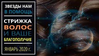 Январь 2020 г.   Стрижка волос и ваше благополучие