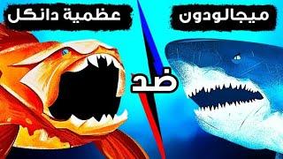 ماذا لو واجه الميغالودون السمكة التي تمتاز بأقوى عضة على الإطلاق