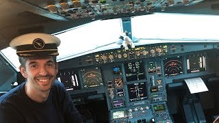 Qantas A330 Business Class & Cockpit | Brisbane - Narita