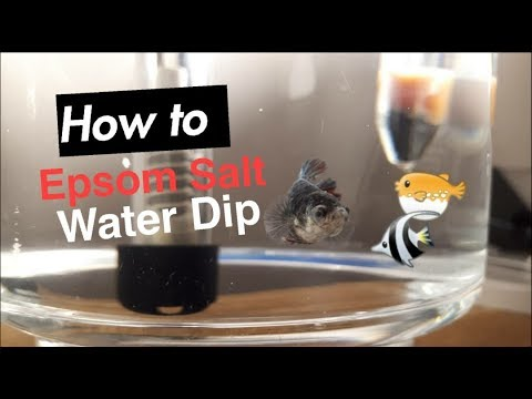 Epsom Salt Dip For Sick Fish