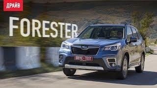 Subaru Forester 2018 ― Тест-Драйв С Никитой Гудковым
