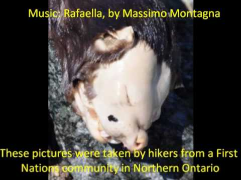 Monster' Emerges From Creek In Canada - YouTube