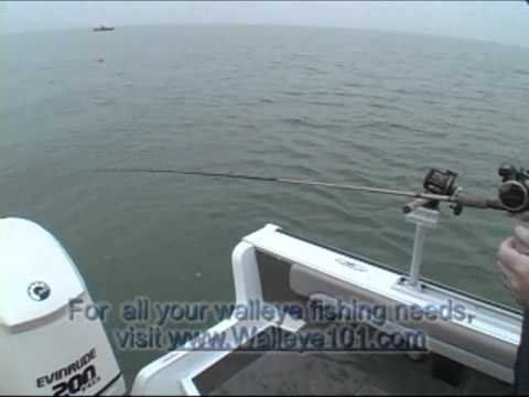 OffShore Tackle Tadpole Video Clip