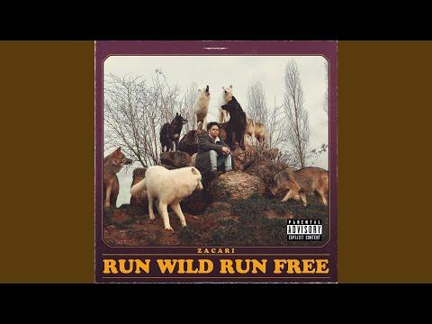 Run Wild Run Free Mp3