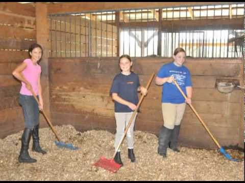 Casperey Stables Horse Camp - YouTube