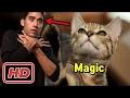 New Zach King Magic Tricks - Best Zach King Magic Vines Compilation 2017